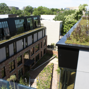 Featured image for Adaptive Reuse Case Studies